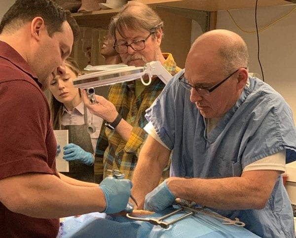 Robert Rush (general surgeon, retired colonel, right) and Dr. Robert Sweet (PI of the AMM grant, Urologist, left) are seen conducting a laparotomy on the manikin, as David Hananel (PI on the AMM subcontract at UW) and Hazel Williams (part of the CREST anatomy team) observe in the background. Image credit: University of Washington CREST.