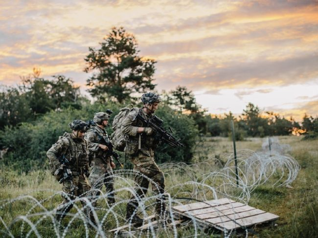 Live Training: The Final Gate Before Entering Combat