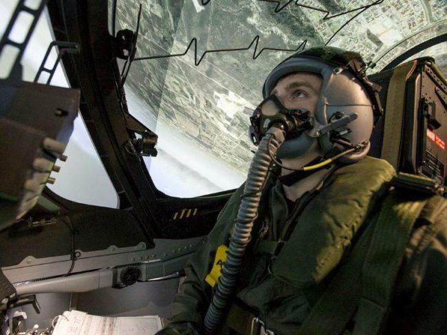 Hawk simulator